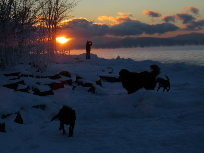 Sunset at Oakledge with the dogs